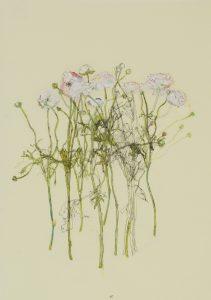 Flowers (Circle), 2019