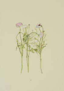 Flowers (3 Stems), 2019